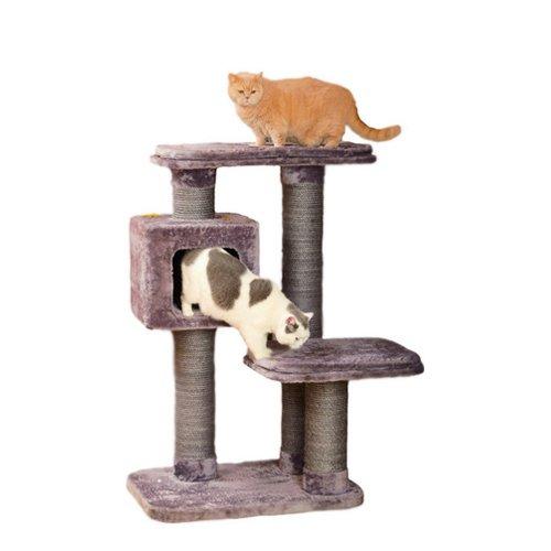 arbre chat big cat animabook. Black Bedroom Furniture Sets. Home Design Ideas